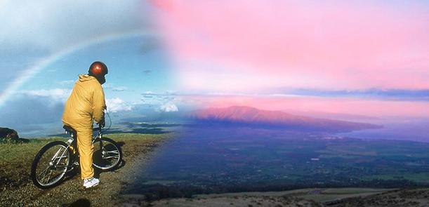 Sunrise downhill bike tour maui