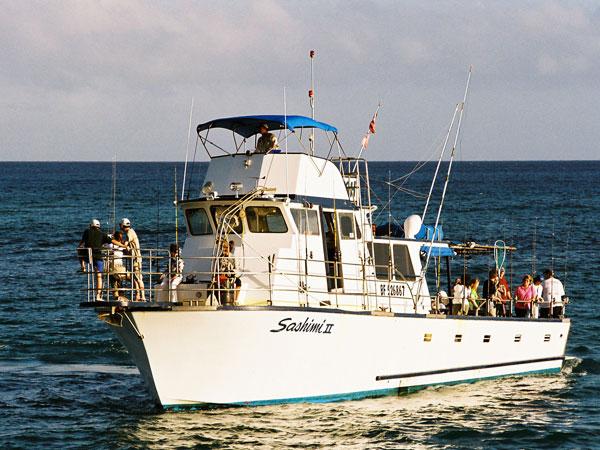 Sashimi half day trolling jigging for 65 39 delta for Moana fishing pole