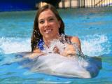 Sea Life Park Dolphin Swim Adventures