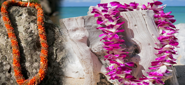 Traditional maui lei greetings hawaii activities discount maui lei greetings m4hsunfo